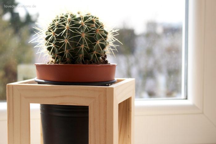 DIY Pflanzenständer Fotorahmen 14