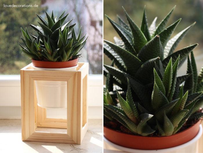 DIY Pflanzenständer Fotorahmen 13
