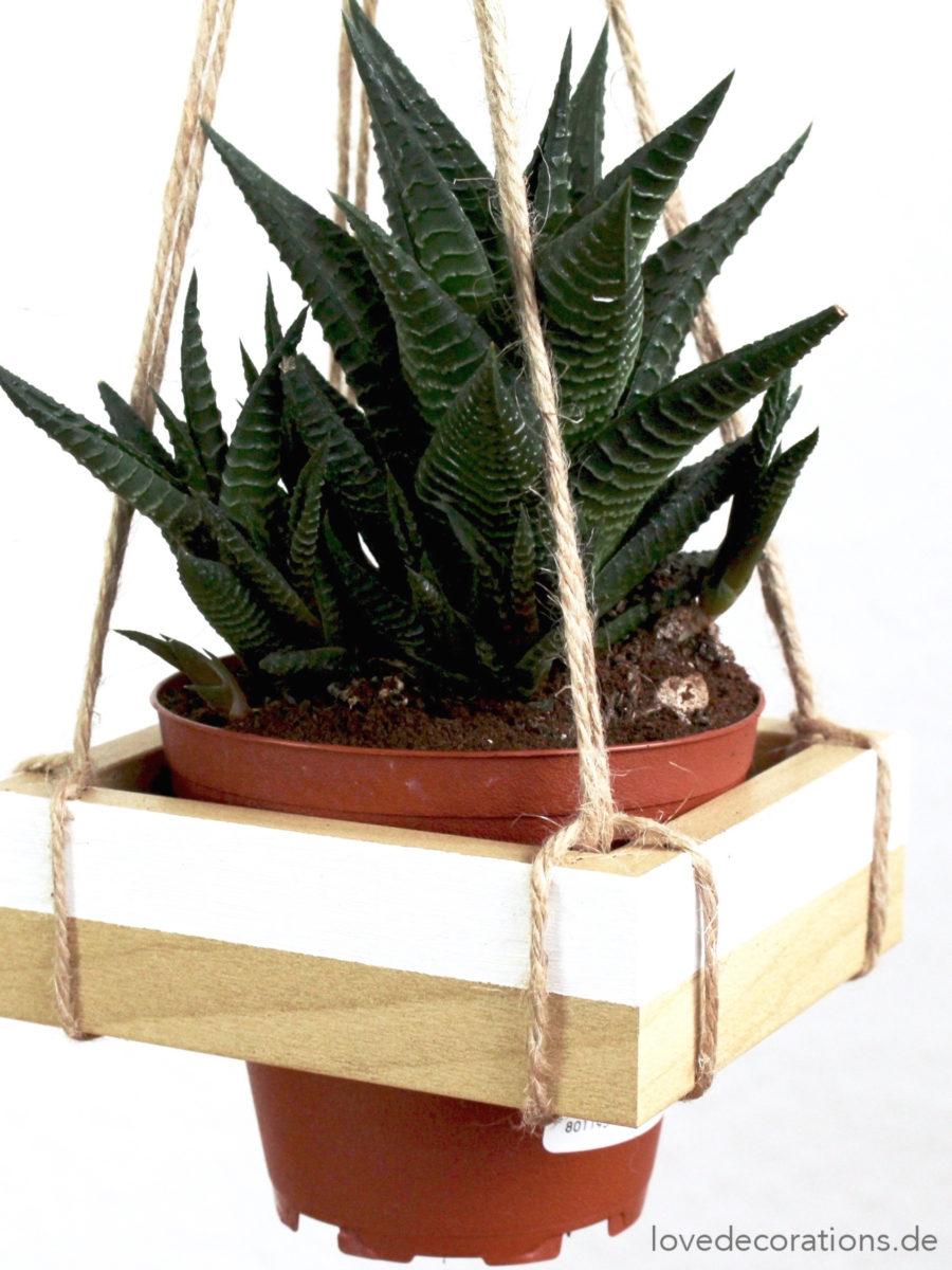 DIY Hänge-Pflanzenhalter | DIY Hanging Planter