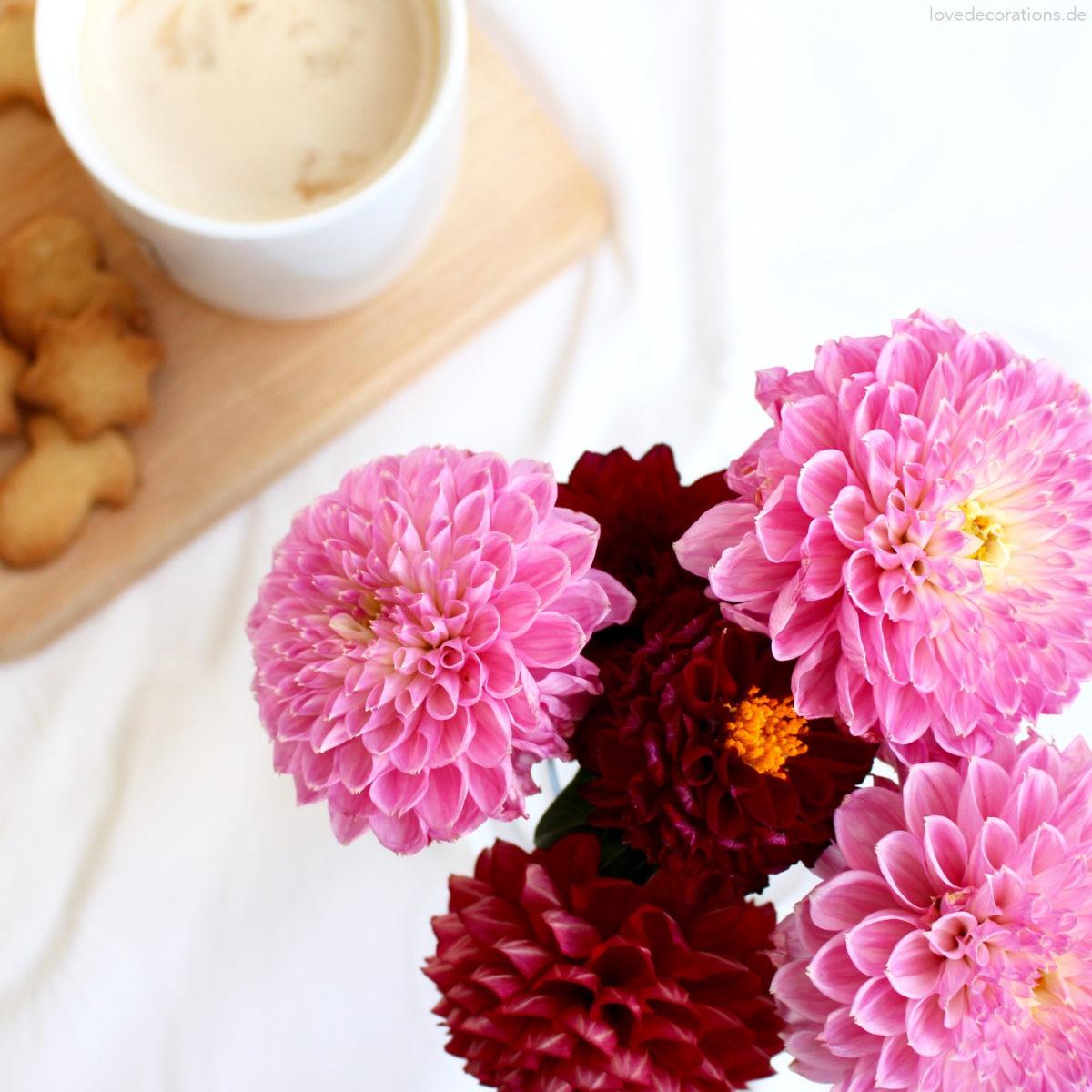 Schöne Herbstblumen | Love Decorations